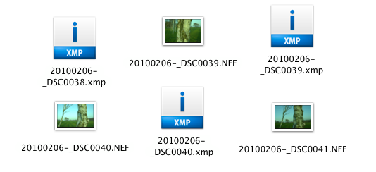 Screenshot of XMP files next to NEF (raw) files
