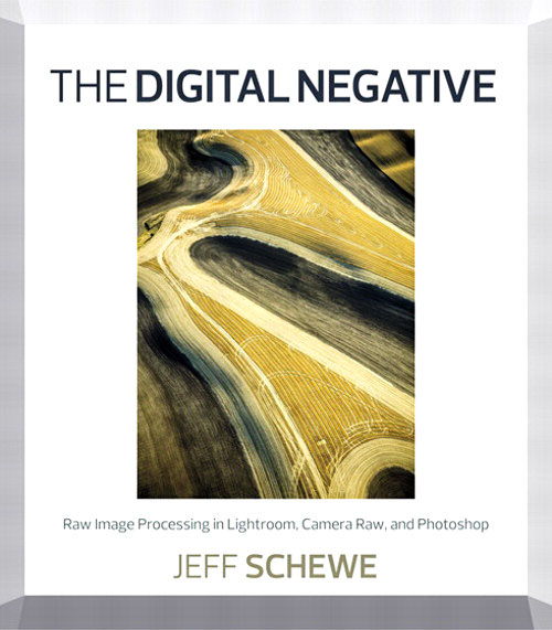 Cover Image from Jeff Schewe's book, The Digital Negative